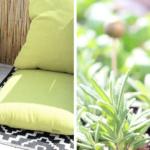 Pflanzen auf dem Balkon und ein kleines Mini-DIY