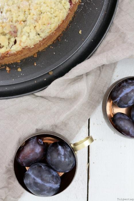 pflaumen-quark-streusel-kuchen2 streuselkuchen