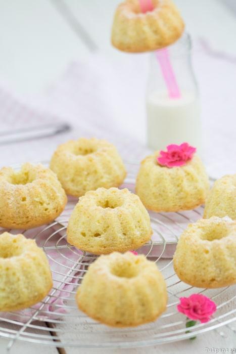Mini-Gugl Gugelhupf Rezept Kokosmilch Kokos einfach