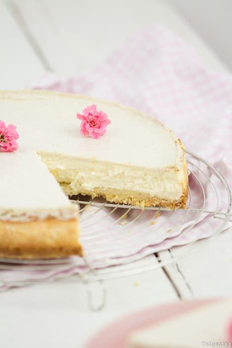 Käsekuchen einfach gelingsicher Cheesecake Rezept